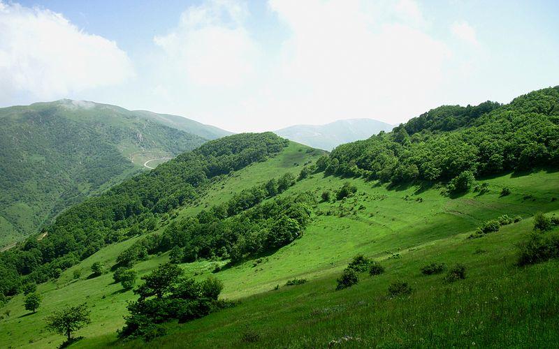 http://aharimiz.arzublog.com/uploads/aharimiz/arasbaran_junggle2.jpg